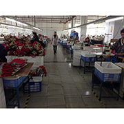 High Quality Leather And Accessories Co.Ltd - Our Production Line