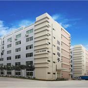 Hinen Electronics (Shenzhen) Co. Ltd - Our company building