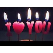 Shanghai Hongbin International Co.Ltd - Share Your Love in the World