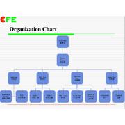 Cfe Corporation Co.,Ltd-Organization chart