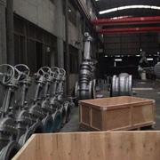 Zhejiang Galaxy Machinery Manufacture Co. Ltd - Our packing line