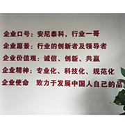 Shenzhen Anytek Information Technology Co. Ltd-Our Slogan