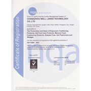 Well Lands Enterprise Co. Ltd-ISO 13485, ISO 9001