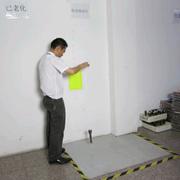 Dongyang Small Sun Lighting Co. Ltd - Drop testing