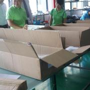 Esavior (Guangzhou) Green Energy Co. Ltd - Inside our packaging line