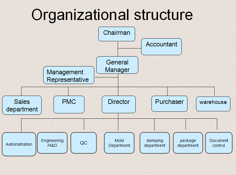 Dongguan Qiwei Metal And Mold Factory-Organizational Structure