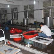 Qingdao Hongking Hair Products Co. Ltd - Our color room