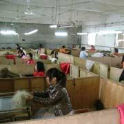 Qingdao Hongking Hair Products Co. Ltd - Our hair brush process