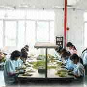 HK Yida Accessories Co. Ltd - Yida quality control worker
