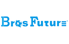 Shenzhen Brosfuture Electronics Co. Ltd