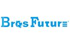 Shenzhen Brosfuture Electronics Co. Ltd