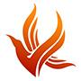 Fuzhou Zhonglei Import & Export Co., Ltd