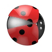 Ladybug car air freshener relieves fatigue