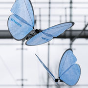 Robotic jellyfish, butterflies mimic nature