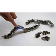 MIT's modular robot snake responds to touch