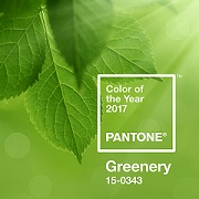 Greenery is Pantone color of the year for 2017