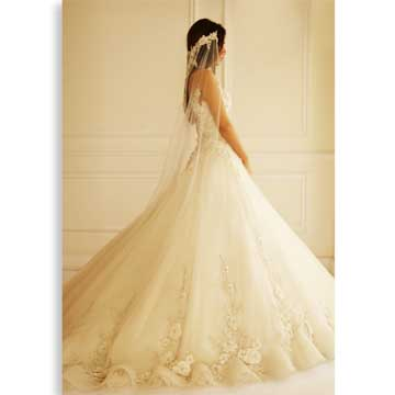 Organza wedding gown trimmed with appliques, beads