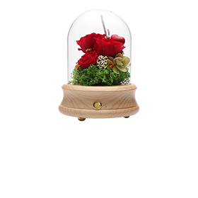 Novelty speaker displays, preserves flowers