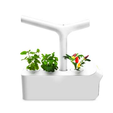 Smart pot waters plants automatically