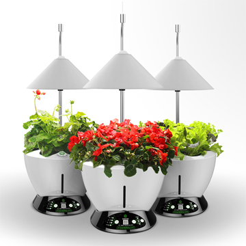 Indoor hydroponic system uses LED lights