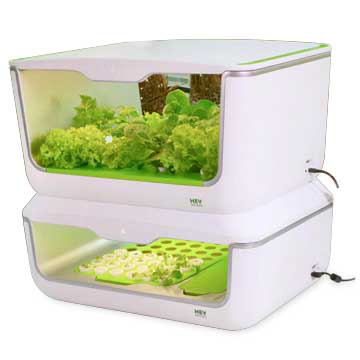 Indoor vegetable-growing box works with app