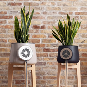 Smartphone-compatible Wi-Fi flower pot purifies air