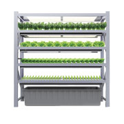 No-soil vertical LED grow box for vegetables