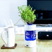 USB hydroponic desk lamp shows root silhouette
