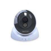 Gallery View: Easy-to-access megapixel IP cameras dominant