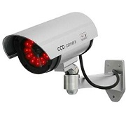 Amazon Best Sellers in simulated surveillance cameras: See China alternatives