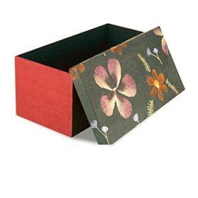 Caja de almacenamiento con las flores presionadas reales